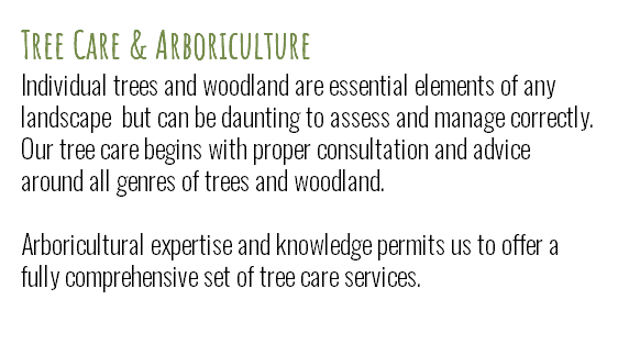 Tree Care & Arboriculture Individual trees and woodland are essential elements of any landscape but can be daunting to assess and manage correctly. Our tree care begins with proper consultation and advice around all genres of trees and woodland.
